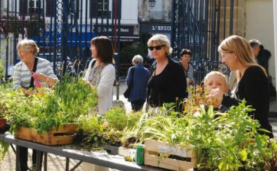Fête des Jardins 2014 au Jardin de la ménagerie de Sceaux