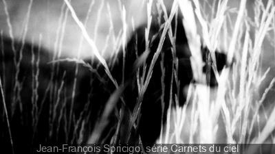 Jean-François Spricigo, Carnets du ciel à la Galerie Maeght