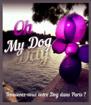 dog day, le lacher de balloon by expo in the city