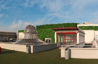 Paris sous les fraises, le toit végétal des Galeries Lafayette