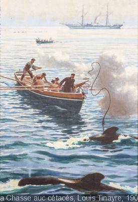 Albert Ier de Monaco, un prince à la chasse au Musée de la Chasse