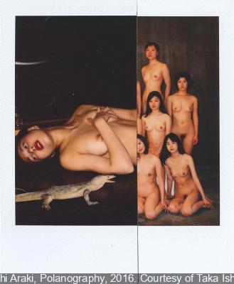 Polanography, l'exposition de Araki à la Galerie 8co119