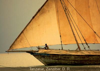 Aventuriers des mers à l'Institut du Monde Arabe