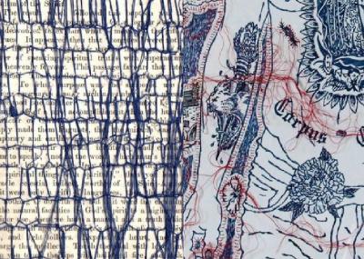Histoires de Points, Anne Paris-Cindric - Brankica Zilovic à la Galerie Laure Roynette