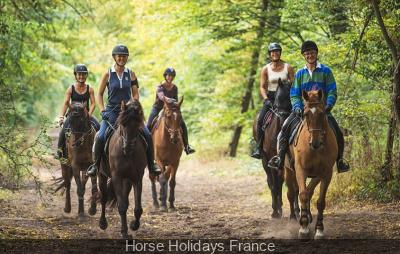 Balade à cheval dans la forêt de Saint-Germain