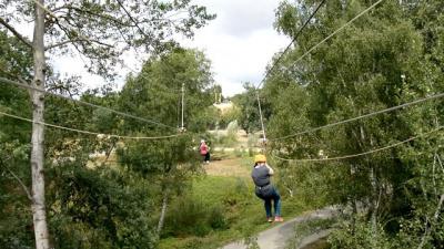 Voler au-dessus des lions, la tyrolienne insolite du Zoo de Thoiry