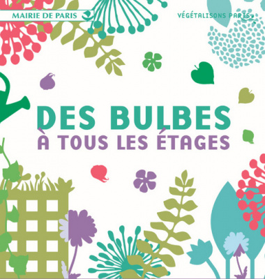 Distribution gratuite de 40.000 bulbes d'anémone à Paris !