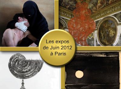 exposition juin 2012 Paris, musée juin 2012 Paris, Musée Paris juin 2012, exposition voir Paris juin 2012, Expositions Paris juin 2012
