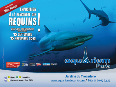 exposition A la rencontre des requins à l'Aquarium de Paris