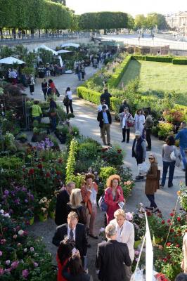 Jardins, jardin 2015 aux Tuileries