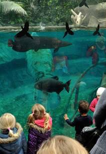 Le Parc Zoologique de Paris pour les vacances de printemps