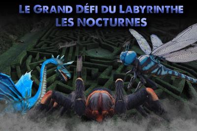 Le Grand Défi du Labyrinthe du Zoo de Thoiry en nocturne