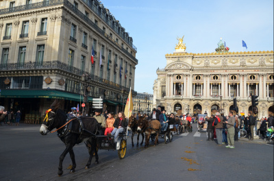 Le salon du cheval défile dans Paris