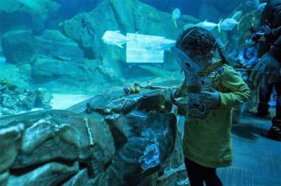 Chasse aux oeufs de Pâques à l'Aquarium de Paris