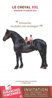 le cheval xxl; les cevaux xxl, hippodrome de vincennes
