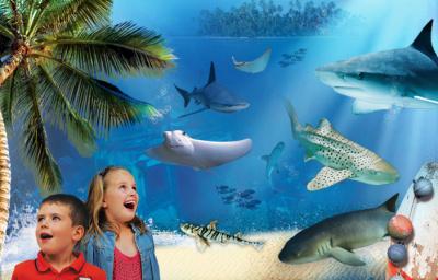 L'ile aux requins... Osez l'aventure, sea life, aquarium