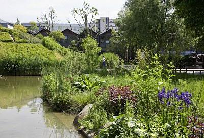 fête des jardins 2012