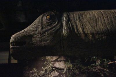 Report : Dinosaure, la vie en grand au Muséum