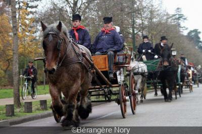 Défilé de chevaux Ch'ti dans Paris