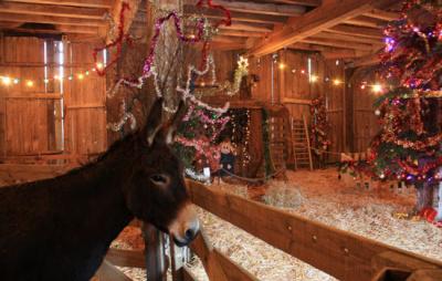Crèche et Marché de Noël à la Bergerie Nationale