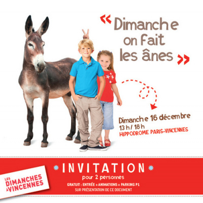 Journée spéciale âne à l'Hippodrome de Paris Vincennes