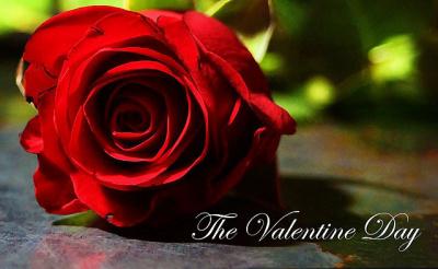 Soiree celibataire st valentin toulouse