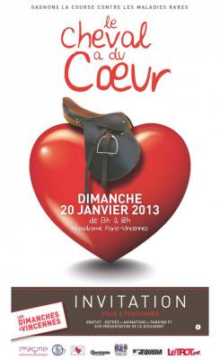 Le Cheval a du coeur à l'hippodrome de Paris-Vincennes