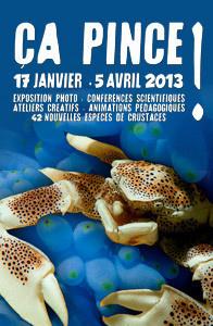 Ça pince à l'Aquarium de Paris