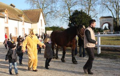 Le Carnaval des animaux à la Bergerie Nationale