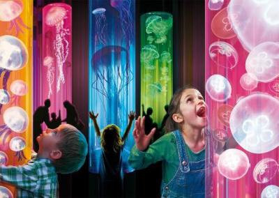 Disco Méduses à l'Aquarium Sea Life Paris-Val d'Europe