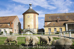 Ménager la chèvre et le chou à la Bergerie Nationale