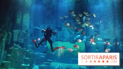 Exposition Under The Pole à l'Aquarium de Paris