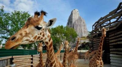 Zoo de Vincennes gratuit pour les enfants !