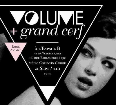 Volume et Grand Cerf à l'Espace B