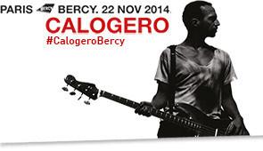 Calogero en concert à Paris Bercy en novembre 2014