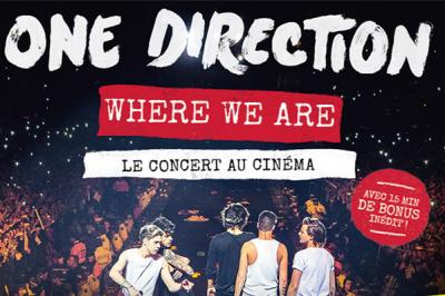 """One Direction présente le concert """"Where We Are"""" au cinéma"""