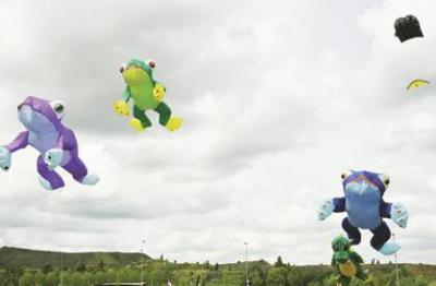 Animations Cerf-Volant sur les Berges de Seine