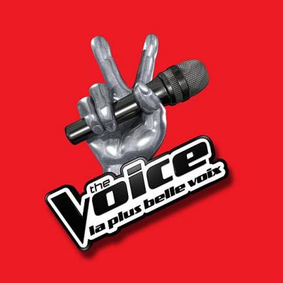 The Voice, la tournée 2015, au Zénith de Paris