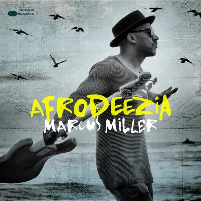 Marcus Miller en concert à l'Olympia de Paris en 2016
