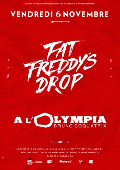 Fat Freddy's Drop en concert à l'Olympia de Paris en novembre 2015