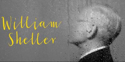 William Sheller en concert à la Salle Pleyel de Paris en décembre 2016