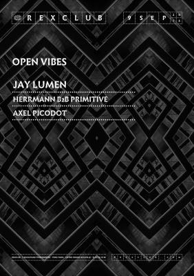 Open Vibes au Rex Club avec Hermann