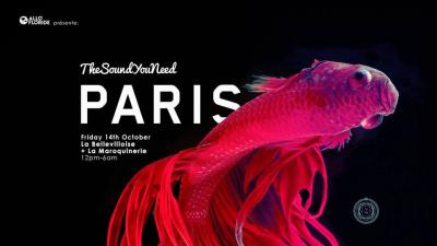 TheSoundYouNeed Festival Paris 2016 à La Bellevilloise et La Maroquinerie