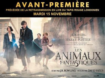 Les Animaux Fantastiques en avant-première officielle au Grand Rex de Paris