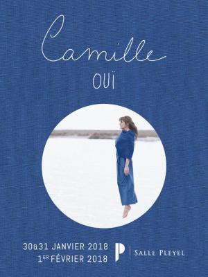 Camille en concert à La Salle Pleyel de Paris en 2018
