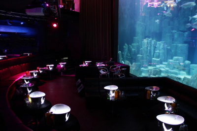 Ouverture du club « L'Aquarium » à l'Aquarium de Paris en septembre 2013