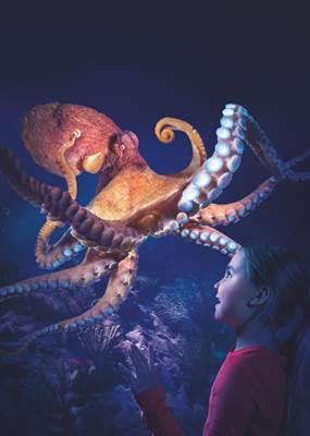 Pouples Fiction, la nouvelle exposition de Sea Life