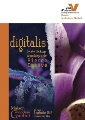 Digitalis de Pierre Estève à la Maison du docteur Gachet