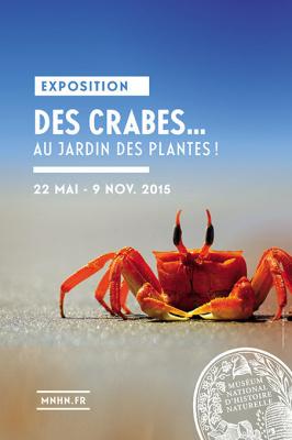 Des crabes au Jardin des Plantes, l'expo nature à ne pas manquer !