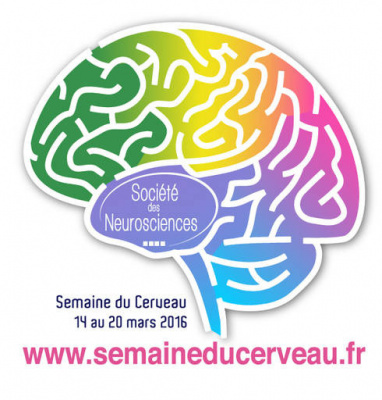 La Semaine du Cerveau 2016 à la Cité des Sciences
